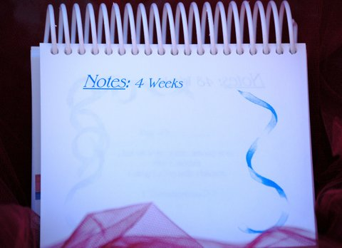 The Bible Tells Me So - Note pages every 4 weeks - devotional calendar parents of newborns